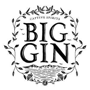 big-gin-logo300